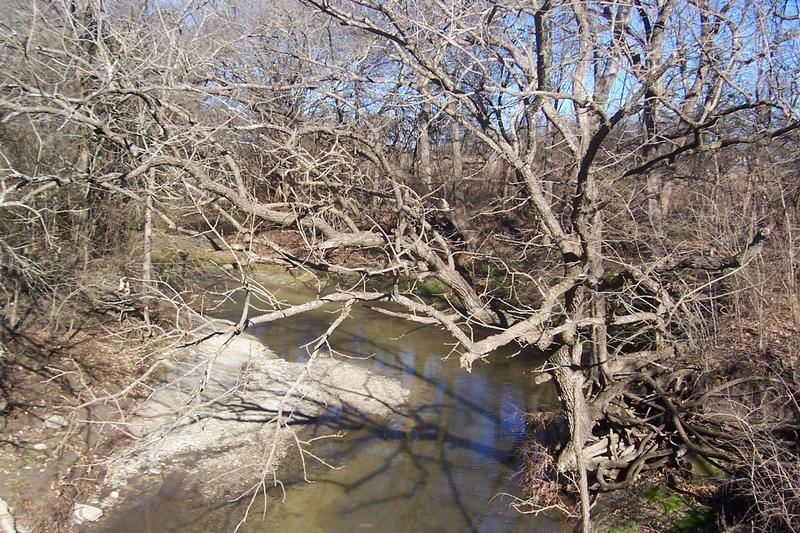 223.84 acres in Honey Grove, Fannin County, Texas