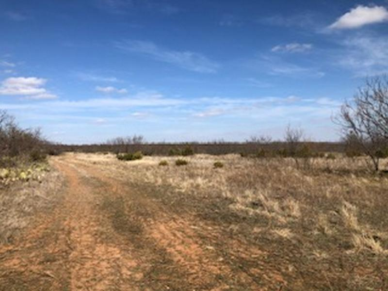 158 acres in Bronte, Coke County, Texas