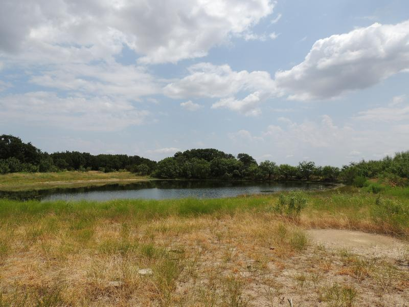 285 Acres Northeast McCulloch County in Brady, Mcculloch County, Texas