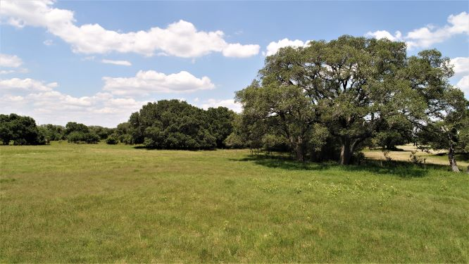 Rural acreage! 11+/- acres in Rock Island, Colorado County, Texas