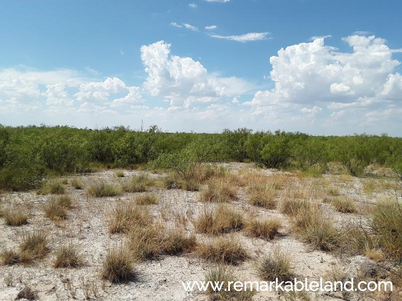 160 Acre Camp near Imperial, TX w/ Drone Video in Imperial, Pecos County, Texas