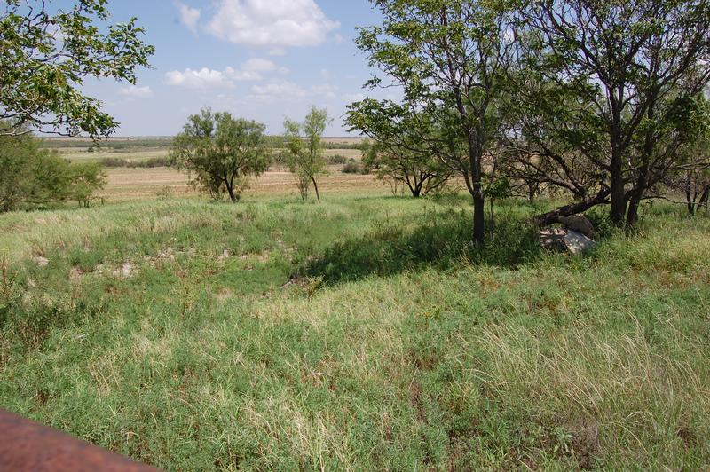 131.48 Acres Nolan County in Roscoe, Nolan County, Texas
