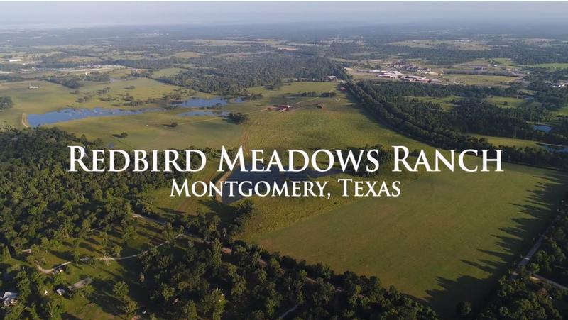 For Sale in Montgomery County, Montgomery, Texas
