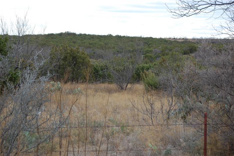 100 acres in Sweetwater, Nolan County, Texas