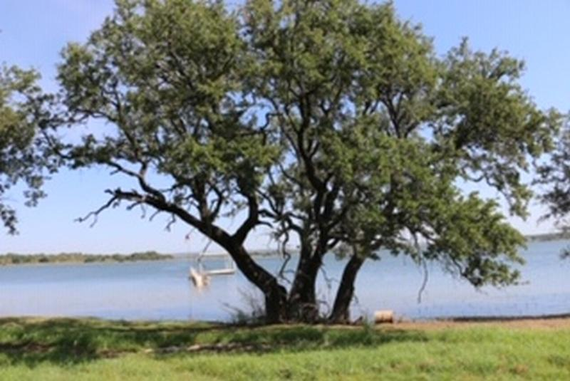 2 acres in Blackwell, Nolan County, Texas