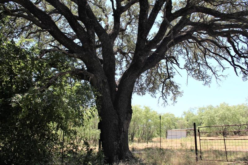 30 acres in Early, Brown County, Texas