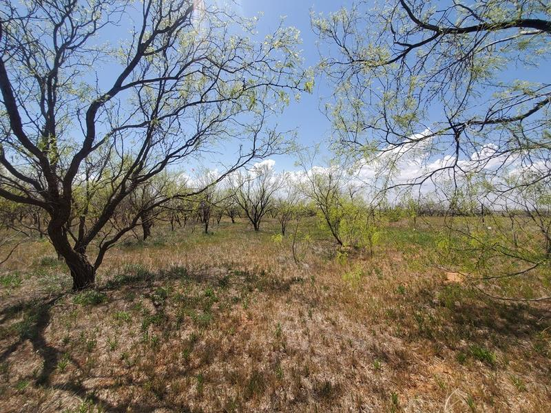 80 acres in Rotan, Fisher County, Texas